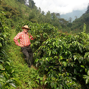 Guatemala SHB EP Slow food Esquiplas Agricultural Cooperative: Micro-lot balls